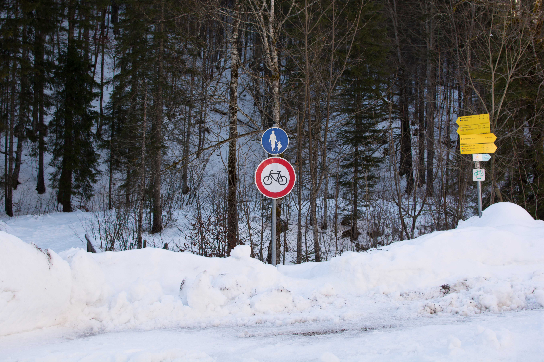 Auf der Forststraße zur Schwarzentennalm der Abzweig nach links über die Brücke auf den Wanderweg für eine Rundtour.