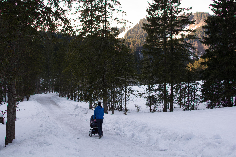 Endspurt zur Schwarzentennalm