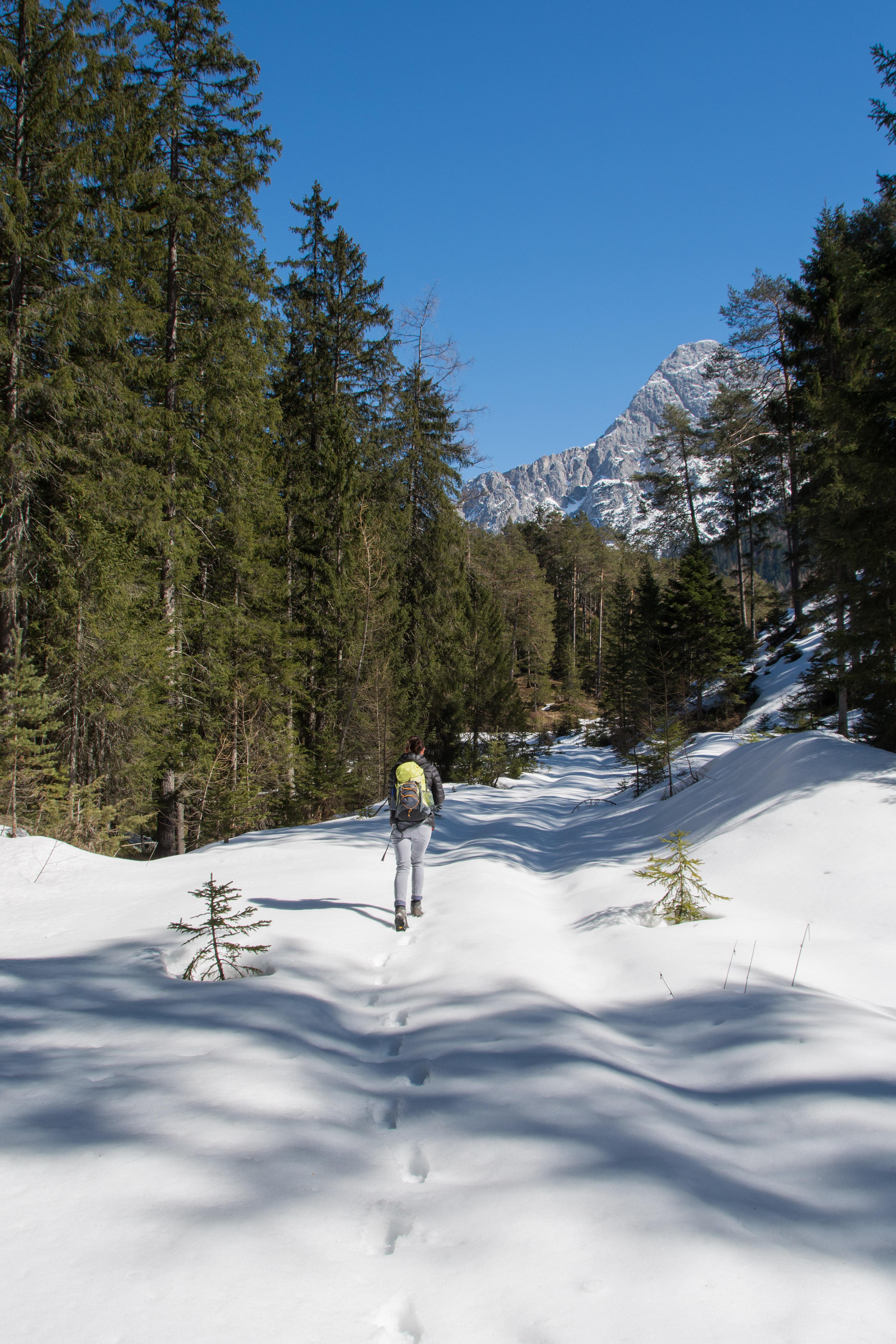 Auch auf dem Rückweg Richtung Biberwier sind wir wieder auf ein Schneeloch gestoßen und haben Spuren hinterlassen