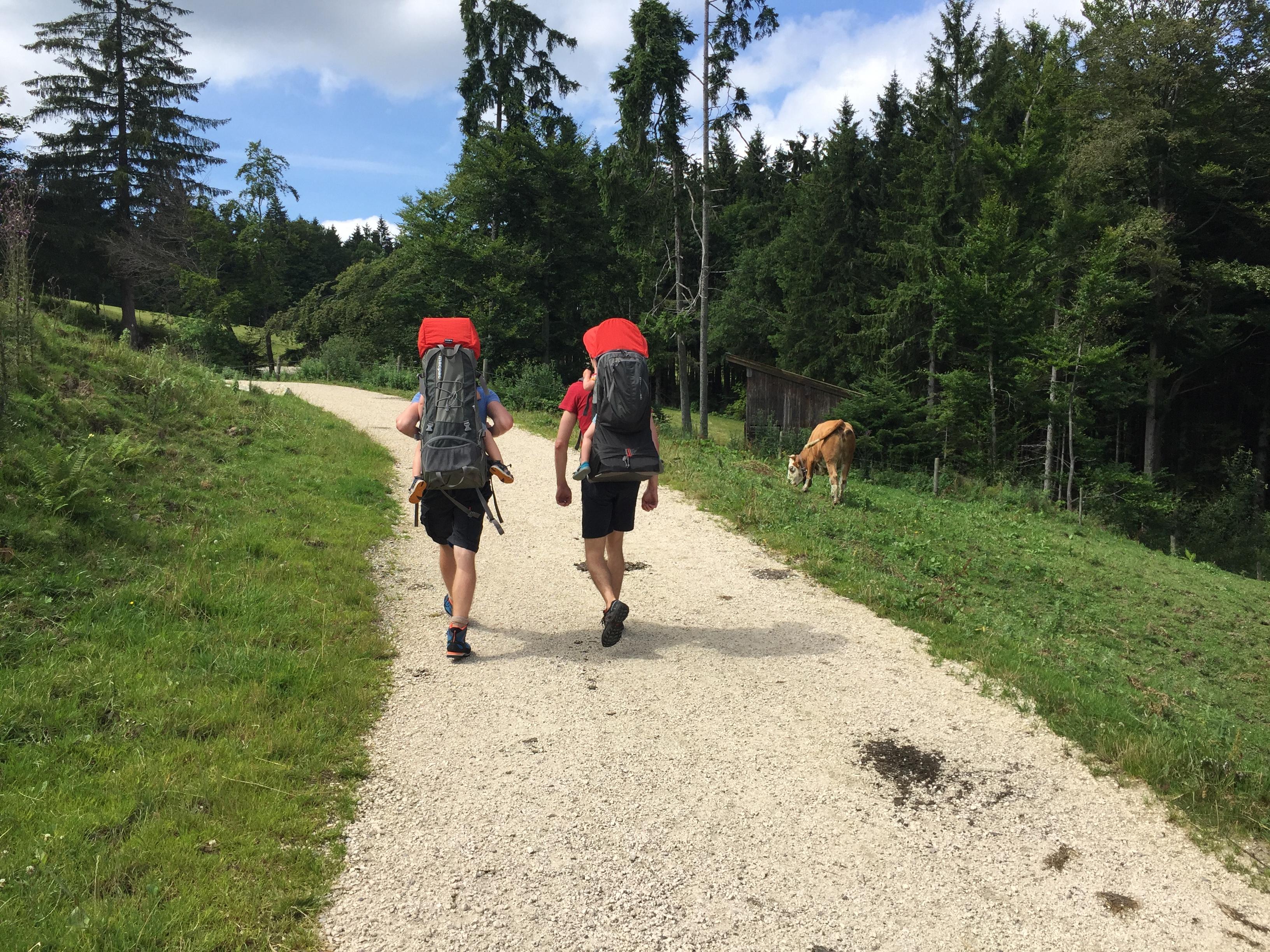 Wanderung mit Kraxe zur Bründling-Alm im Hochfellngebiet.