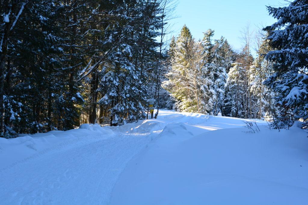 Weg zur Kirchsteinhütte