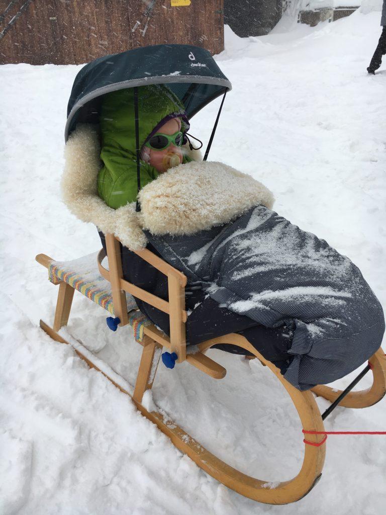 Schlitten mit Schneedach