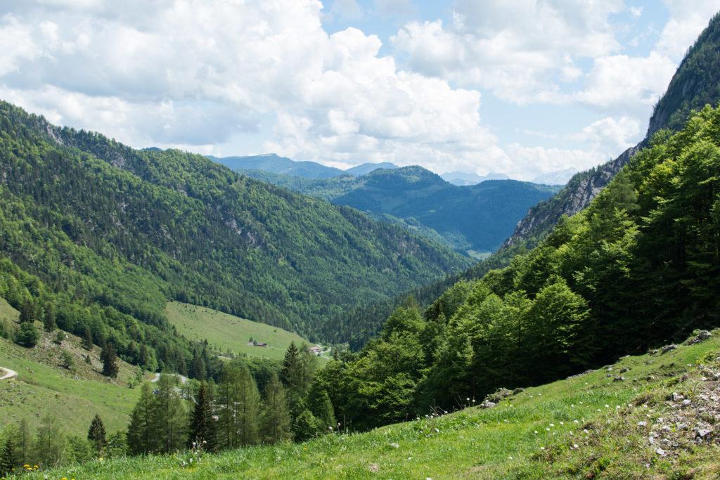 Blick zurück Richtung Kaiserbachtal wo wir an der Griesner Alm gestartet sind.