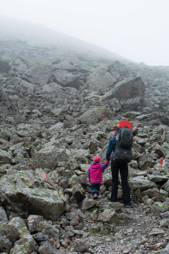 Von der Winnebachseehütte zur Ernst-Riml-Spitze