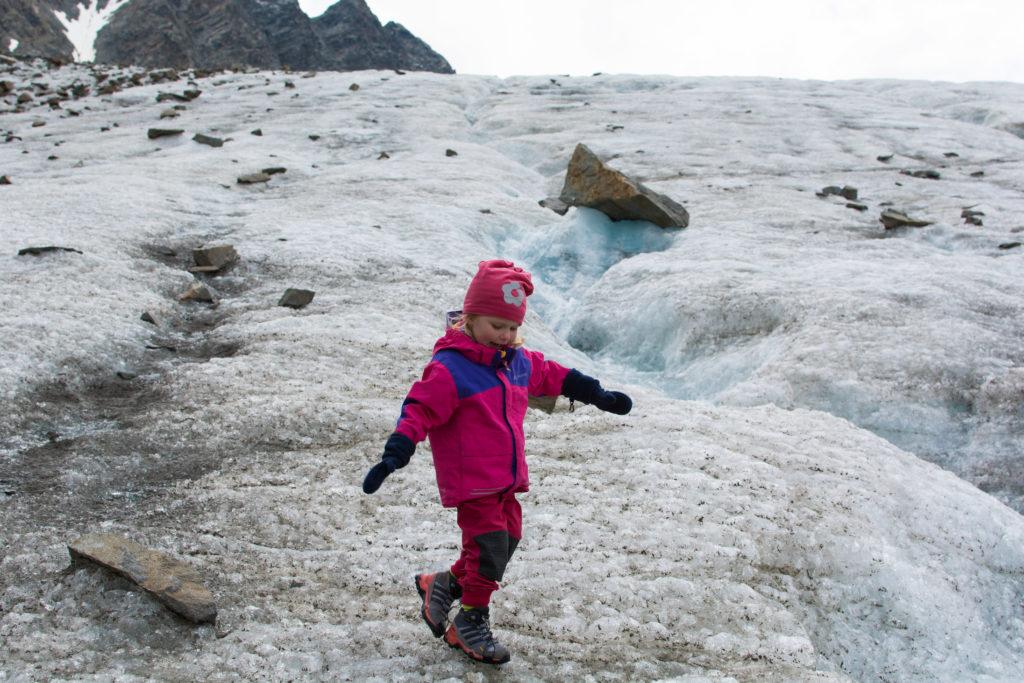 Bachfallenferner Gletschereis