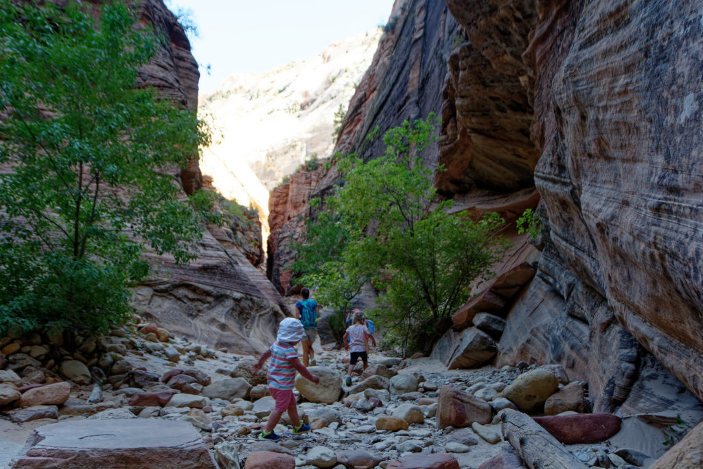 Auf dem Observation Point Trail im Zion National Park