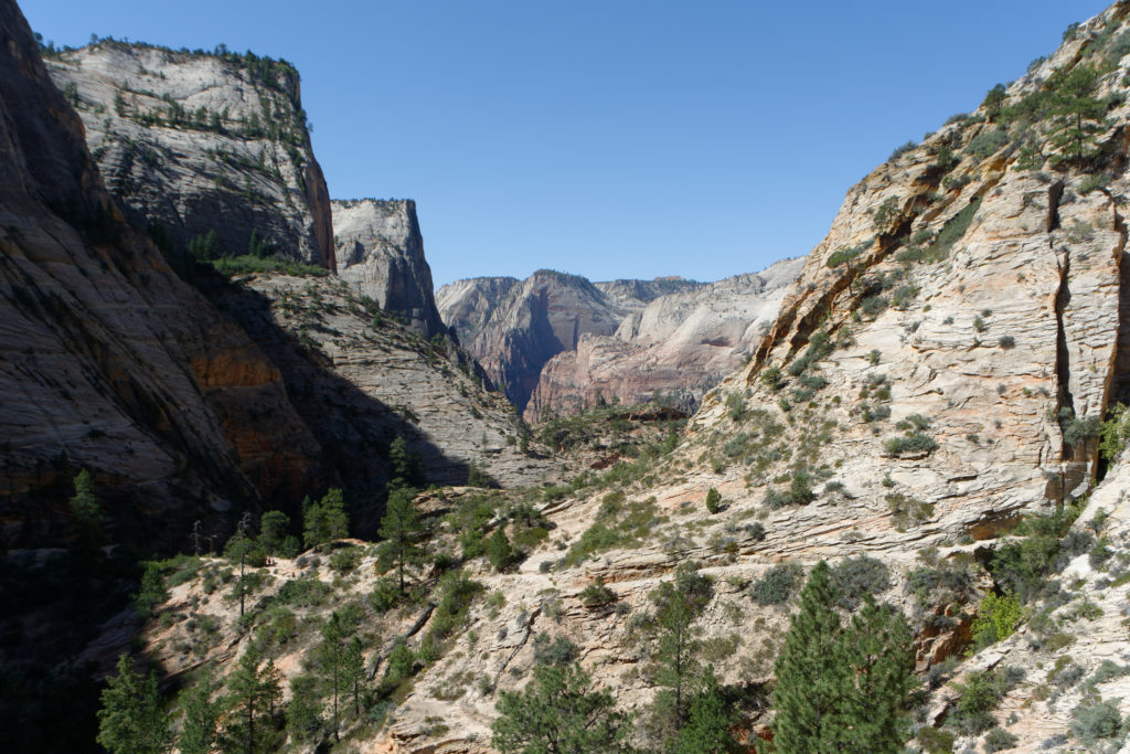 Auf Observation Point Trail im Zion National Park