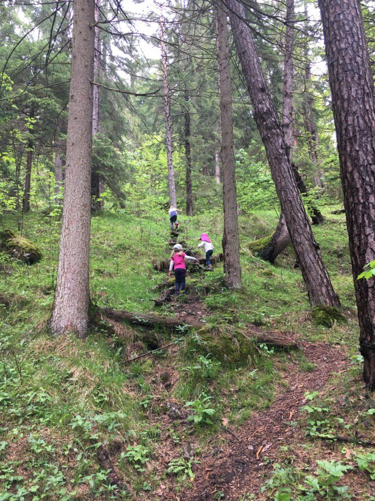 Wanderung zur Tannenhütte mit Kindern