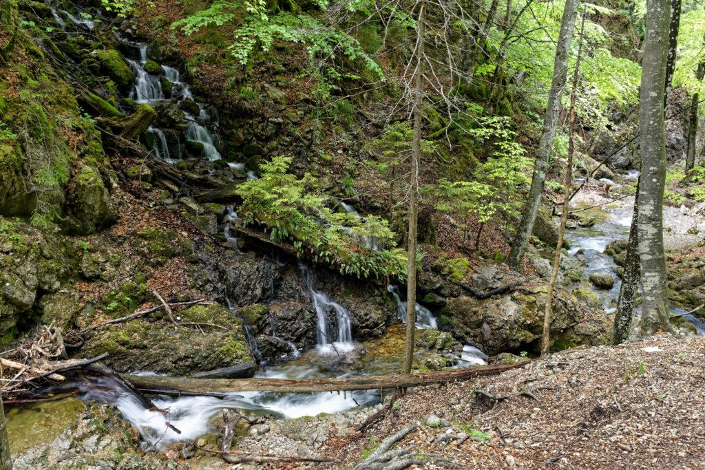 Schliersee Josefsthaler Wasserfälle