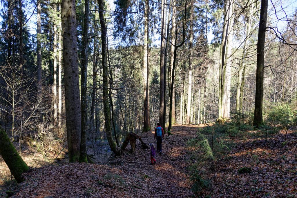 Durch den Wald zu den Schleierfällen