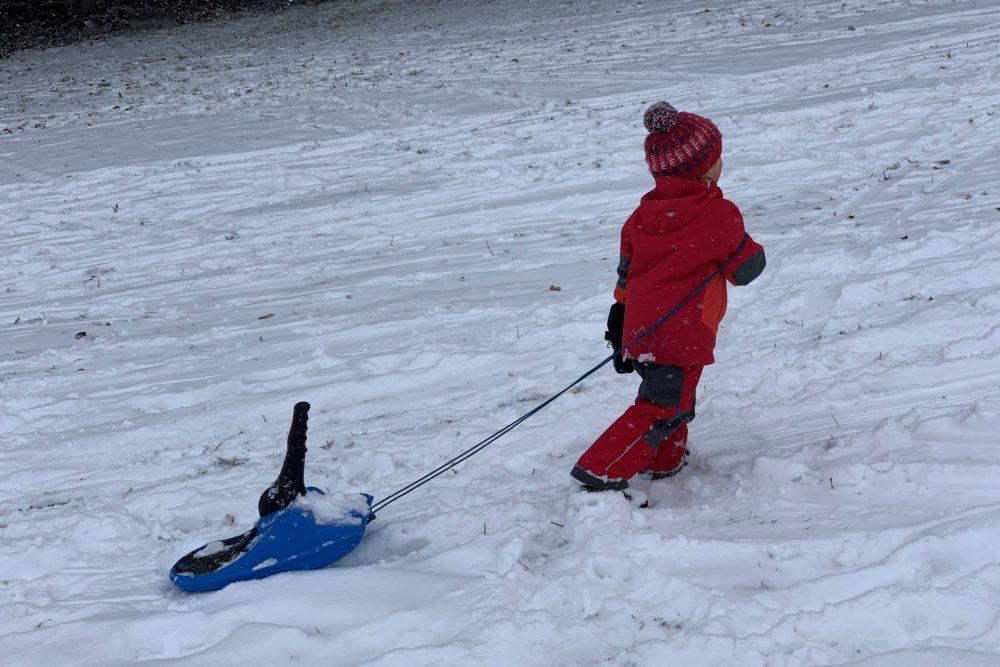 Winter-Aktivitäten mit Kindern rodeln