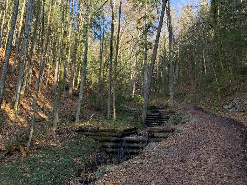 Entlang des Kreiter Graben bergauf zur Schliersbergalm