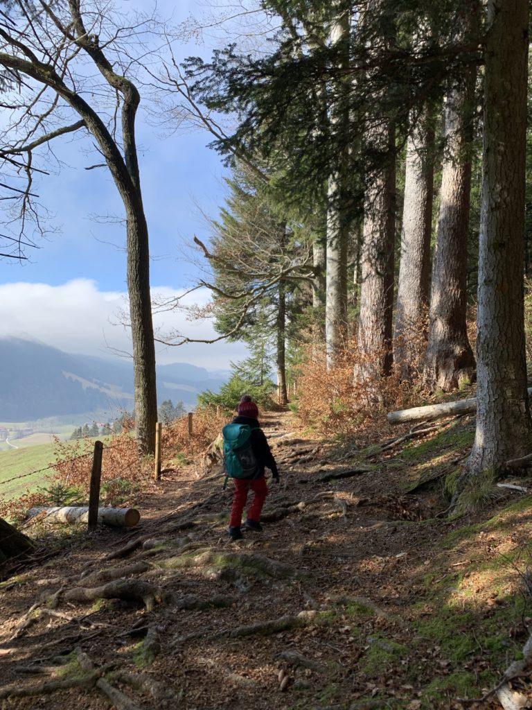 Wandern mit Kindern am Schliersee zur Schliersbergalm